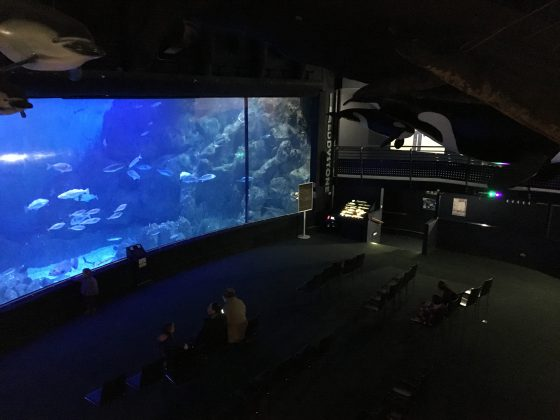 The main tank at the National Marine Aquariu