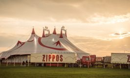 Zippos Circus – our first visit